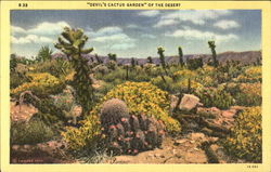 """Devil's Cactus Garden"" Of The Desert"