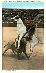 Bull Fight Picador And Horse Charged By Bull