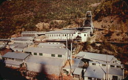 The Famous Sunshine Mines