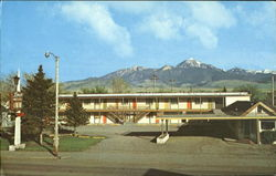 LONG'S MOTOR INN Postcard