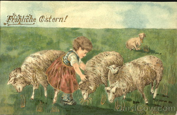 Lambs and a girl With Lambs