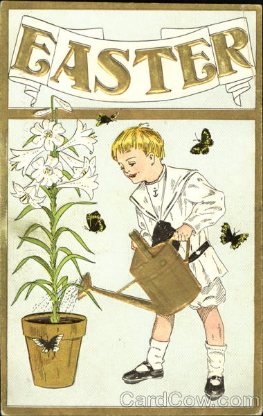 Boy, surrounded by butterflies, watering a plant Flowers
