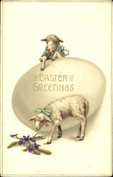 Lambs with Egg