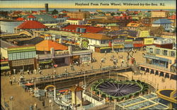 Playland from Ferris Wheel Postcard
