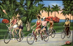 A popular pastime in Palm Beach, Florida Postcard