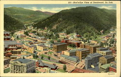 231-Bird's-Eye view of deadwood
