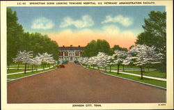 Springtime Scene Looking Towards Hospital, U.S. Veterans' Administration Faculty
