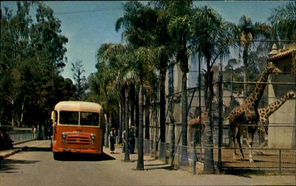Touring Bus - San Diego Zoo California