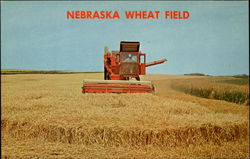 Nebraska Wheat Field