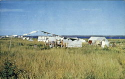 Encampment of Cree Indians at Moose Factory