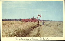 Rice Harvesting, Arkansas Delta Area