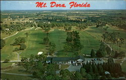 Mt. Dora Florida Postcard