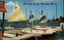 Sailing on the Banana River Postcard