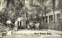 Irresistible Old World Charm - The Famous Royal Victoria Hotel Postcard