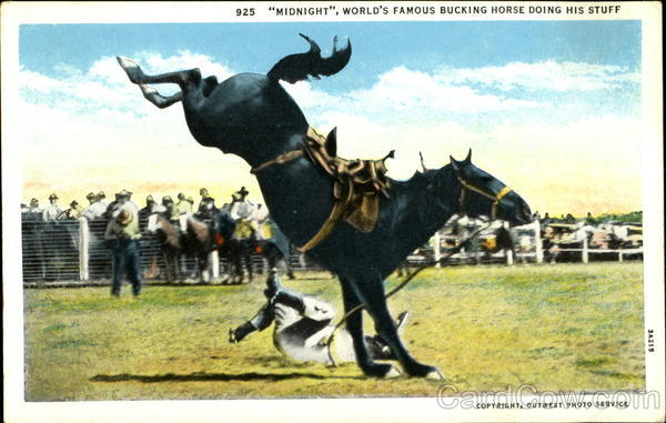 bucking horse game