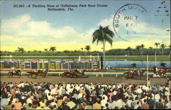 A Thrilling Race at Gulfstream Park Race Course Hallandale Florida