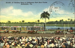 A Thrilling Race at Gulfstream Park Race Course