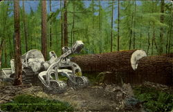 Modern Logging Tractor At Work