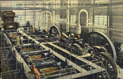 Cane crusher and grinding rools in sugar House Postcard