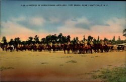 F-29: A Battery of Horse-drawn Artillery, Fort Bragg Postcard
