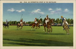 Polo. An Interesting Sport in the Southland