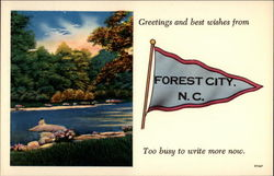 Greeting and best wishes from Forest City, N.C. Too busy to write more now Postcard