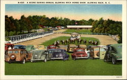 A Scene During Annual Blowing Rock Horse Show