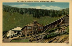 470:-Camp Alice, on Mount Mitchell, Western North Carolina