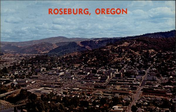 View of the city as it is seen from Mt. Nebo Roseburg Oregon