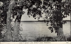 View of Detroit Lake