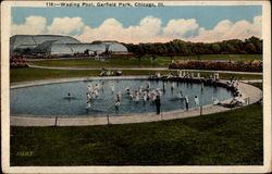 Wading Pool, Garfield Park, Chicago, Ill Postcard