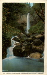 McCord Creek Falls, Columbia River Highway, Oregon Postcard