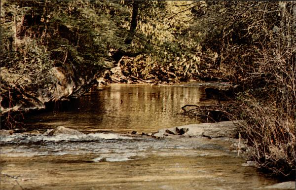 A Mountain Stream Monterey Tennessee