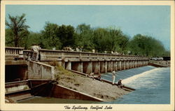 The Spillway, Reelfoot Lake Postcard