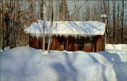 Vacation Cabin in Winter