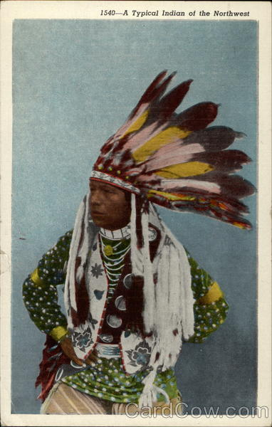 A Typical Indian of the Northwest Native Americana