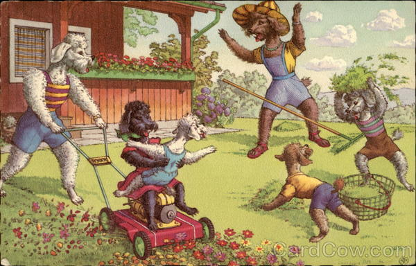 Mainzer Poodles Mowing the Lawn and Playing Dogs Alfred Mainzer (Eugen Hurtong)