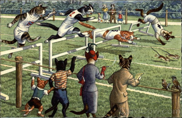 Cat Races Cats Alfred Mainzer (Eugen Hurtong)
