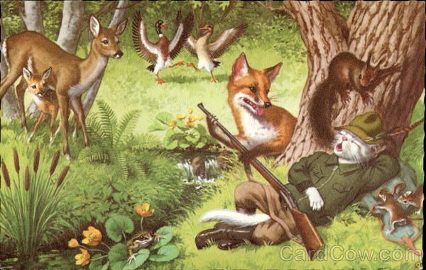 Fox Delight Forest Animals by Disarming Kitty Cat Hunter