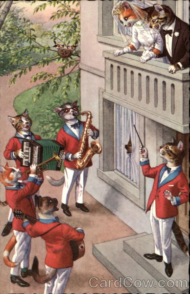 Cats in clothes: Band serenading bride & groom Alfred Mainzer (Eugen Hurtong)