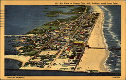Air View of Ocean City, Maryland Postcard