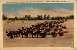 Horse-drawn Artillery Prepared for Inspection. U. S. Army. Camp Jackson