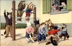 Cats playing in the Schoolyard