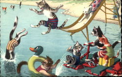 Cats Swimming at the Beach