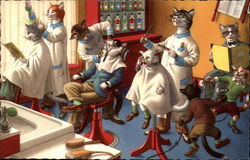 Cats at the Barber