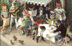 Cats at the Cafe