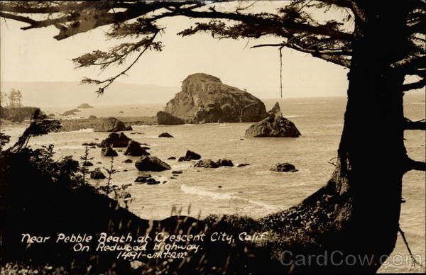 Pebble Beach Crescent City California