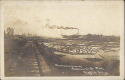 Panoramic View of Finkbine Lumber Co. Plant