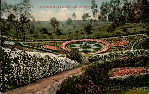 Flowerbeds at Elysian Park Los Angeles California