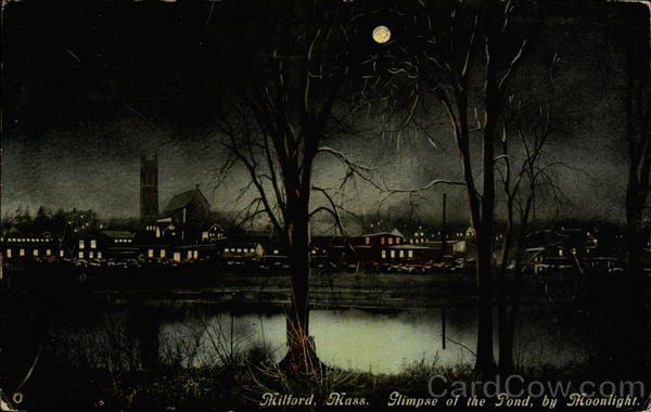 Glimpse of the Pond by Moonlight Milford Massachusetts